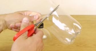 Voici comment créer en 1 minute un piège à guêpes: c'est facile et ça marche!
