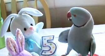 Dão de presente de aniversário para ele um bichinho de pelúcia: veja a sua reação!