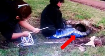 2 people are pulling a rope with strength: when you'll see who's inside the hole, you won't believe it !