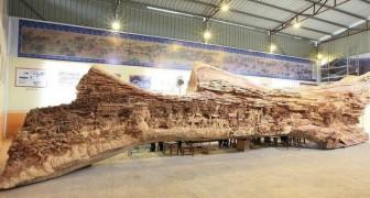 Da lontano sembra solo un vecchio tronco, ma nasconde una scultura da record mondiale