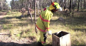 Un bombero encuentra una caja en el bosque...y su vida cambia para siempre