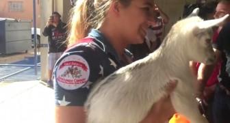 Dit geitje van een paar weken oud werd gestolen: het is van cruciaal belang dat hij wordt herenigd met zijn moeder