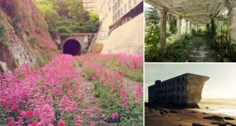 La revanche de la nature: 10 belles images qui vont vous laisser bouche-bée