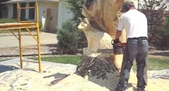 Comienza a tallar un viejo arbol con la motosierra. El resultado final? no se puede creer!