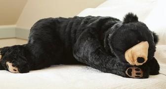 Dormire al caldo tra peli e zanne appuntite: dal Giappone, la nuova frontiera del riposo