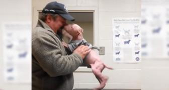 Un pitbull rencontre l'homme qui l'a sauvé: sa réaction émeut même les vétérinaires