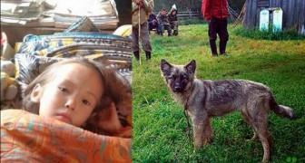 Sopravvive 12 giorni nel bosco grazie al suo cane: sembra un miracolo ma è realtà
