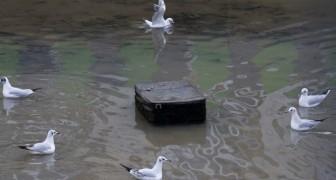Na 15 jaar wordt een kanaal in Parijs drooggelegd: dit is wat er werd gevonden op de bodem