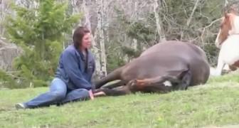 Elle se met à côté du cheval... Ce qui va se passer va vous couper le souffle