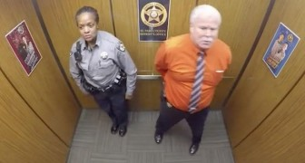 Police officers in an elevator!?....But...WAIT!...Better keep an eye on these guys!.. WOW!