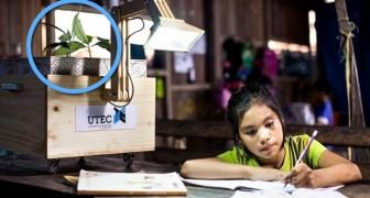 Au Pérou les villages produit la lumière de la photosynthèse des plantes. Voici comment ils y parviennent