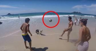 Ils jouent au ballon sur la plage... Mais quand c'est au tour du chien de jouer? WOW!
