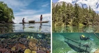 34 immagini ci svelano cosa succede sotto la superficie dell'acqua... spesso a nostra insaputa!