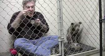 Si chiude nella gabbia con un pit bull malridotto: il suo gesto gli salverà la vita