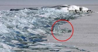Um casal de fotógrafos filma um fenômeno natural espetacular em um lago congelado
