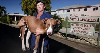 Hij liep 2 dagen met zijn gewonde vriend in zijn armen: dit is een voorbeeld van ware trouw