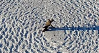Este hombre ha dejado centenares de huellas sobre la nieve: cuando la visual se alarga...Caray!