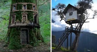 Architektur meets Phantasy: Hier einige der schönsten Baumhäuser der Welt