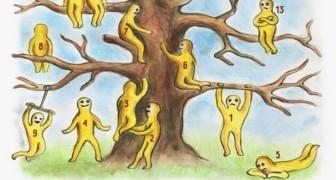 Wähle 2 aus diesen Baum-Kletterern: Ein kleiner Test, um mehr über dich selbst heraus zu finden