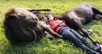 La ragazza si distende tra due enormi cavalli... La loro reazione? Da non credere!