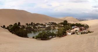 Ecco a voi una delle ultime oasi del deserto sudamericano: un paradiso con le ore contate
