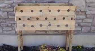 Make 19 holes in the sides of a wooden planter box -- Enjoy the colorful show five months later!