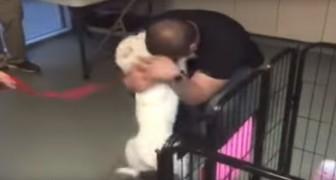 Der Hund war 22 Tage verschollen. Als er seinen Besitzer wiedersieht, ist die Freude groß