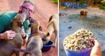 Il nourrit TOUS LES JOURS 80 chiens errants. La raison? Il ne supporte pas de les voir souffrir