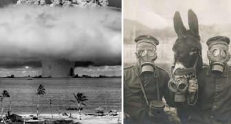 Ecco alcune fortunate fotografie che hanno catturato momenti di portata storica