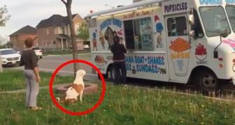 Si mette in fila per prendere il gelato, ma quando arriva il suo turno? Wow!
