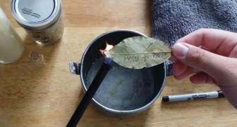 Deze Voordelen Kan Je Halen Uit Het Branden Van Laurierblaadjes. Probeer Het Om Het Te Geloven