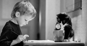 Queste 20 splendide fotografie dimostrano che ogni bambino ha bisogno di un gatto