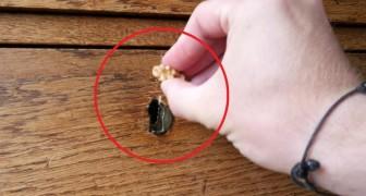 Pasa una nuez sobre el mueble de madera rallado: el resultado es impresionante