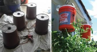 Como cultivar los tomates en casa cabeza para abajo...perfectos para un balcon!
