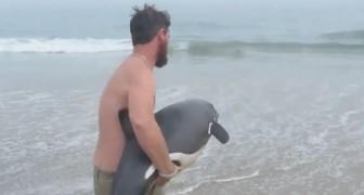 Lass dir nicht die Rettung dieses wundervollen aber leider gestrandeten Delfins entgehen