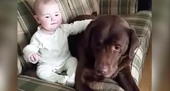 Deswegen sollte JEDES Kind mit einem Hund aufwachsen... Wundervoll!