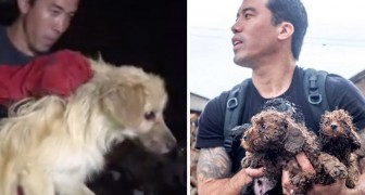 A man saves over one thousand dogs from the Yulin Dog Meat Festival!