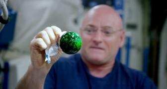 Il plonge un comprimé effervescent dans l'eau en absence de gravité: voilà ce qui se produit