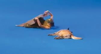 Ze gaat naast haar hond liggen: als de muziek begint, volgt er een waar spektakel!