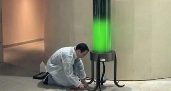 Illumina le città mentre assorbe anidride carbonica: ecco a voi l'ingegnosa lampada ad alghe