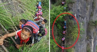 These Chinese kids climb a Stairway to Heaven to go to school!