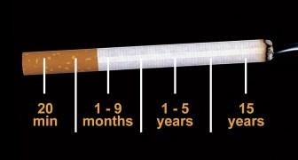 Voici ce qui arrive à votre corps à partir du moment précis où vous arrêtez de fumer