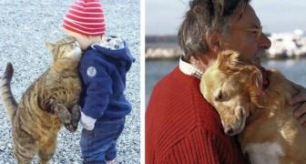 À la maison, à l'hôpital, dans la rue: toutes les manières avec lesquelles les animaux nous aident à mieux vivre
