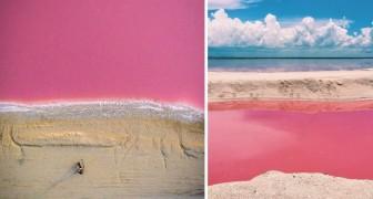 Spiagge bianche e acque... rosa: le increbili immagini del paradiso terrestre messicano