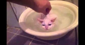 Je ne sortirai pas de cette eau chaude!