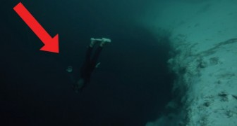 A freediver puts his skills to the test!