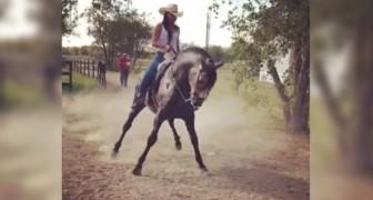 Eine junge Frau und ihr Pferd zeigen einen unglaublichen folkloristischen Tanz!