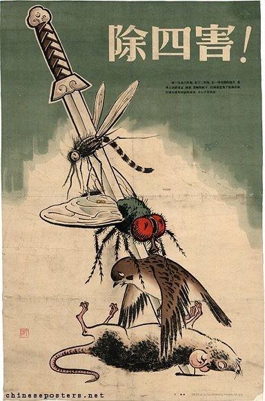 Risultati immagini per mao passeri