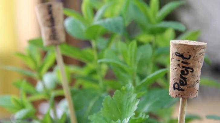 7 cose davvero ingegnose da realizzare con un tappo di sughero for Cartellini per piante
