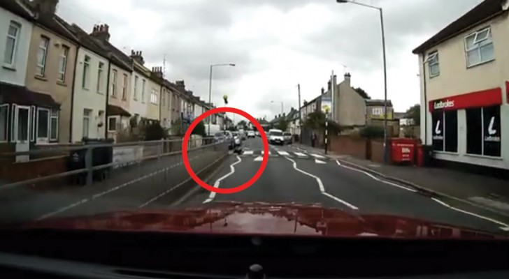 Er filmt eine Katze am Straßenrand: das was passieren wird, ist echt unglaublich